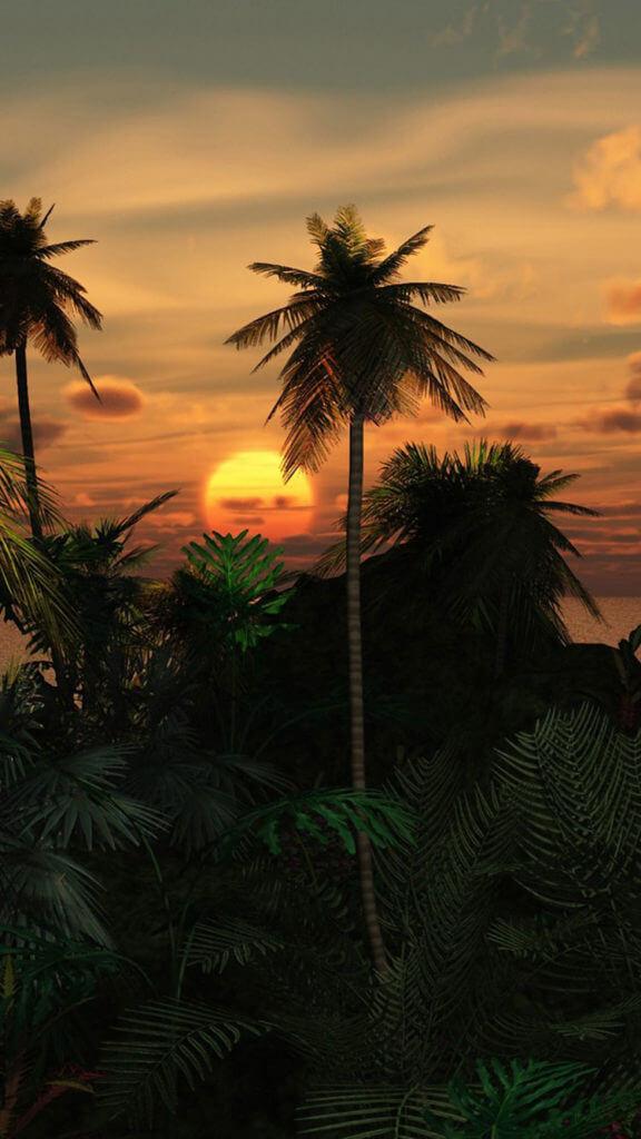 iphone wallpaper beach sunset