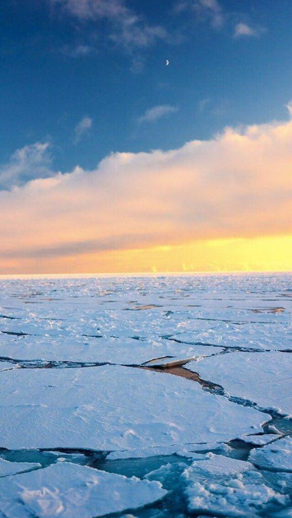Winter iPhone wallpaper sunset