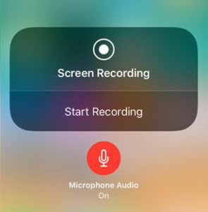 Microphone Audio For Screen Recording