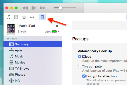 iPad Icon On iTunes