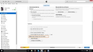 iPad Summary Settings